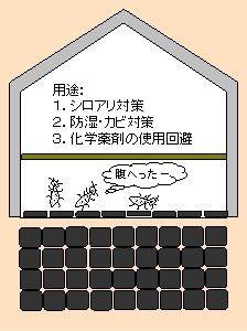 cf02-224x300